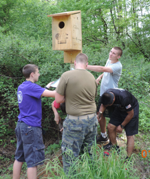 Members of the the Easley High School Naval Junior Reserve Officer Training Corps (NJROTC) orienteering team are shown erecting one of four wood duck houses in the marsh area behind the school.
